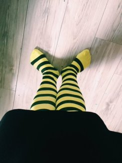 bumble bee tights